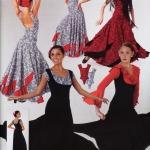 Latin Flamenco Dance Lace Leotard and Overdress